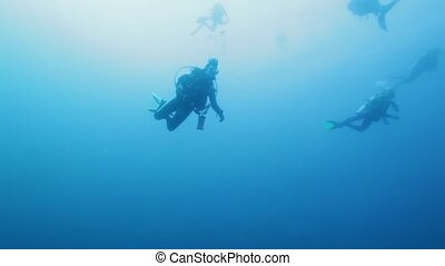 Group of Scuba Divers Swimming in Ocean Blue