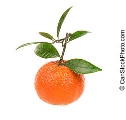 Fresh tangerine isolated on white background
