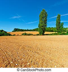 Plowed Fields - Plowed Sloping Fields of France in the...