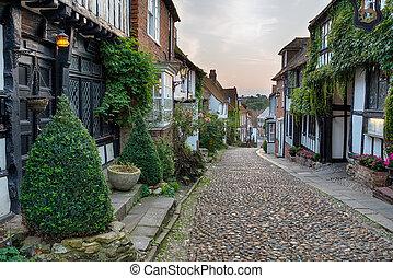 Beautiful Cobblestone Street