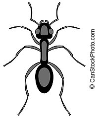 Ant - Illustration of the ant insect icon
