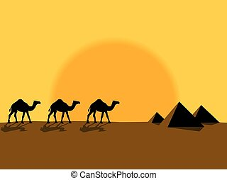 Camels - Desert evening landscape with the camels and...