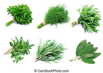 Collage of green herbs
