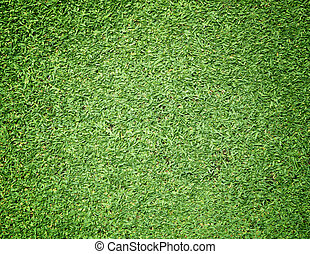 Golf Courses green lawn natural green background.