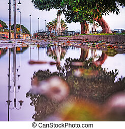 reflection on a puddle in hdr tone mapping effect