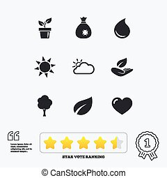 Sprout, leaf icons Garden and weather signs - Garden sprout,...