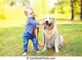 Little boy child playing with Golden Retriever dog on grass...
