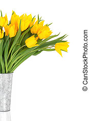 jaune, tulipe, fleur, beauté