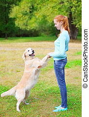Happy owner woman playing with Golden Retriever dog on grass in park