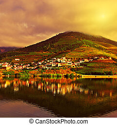 River Douro - Vineyards in the Valley of the River Douro at...