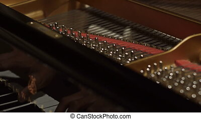 Detail of piano chords during a performance