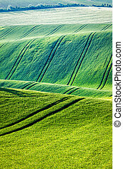 Rolling landscape of South Moravia - Rolling landscape of...