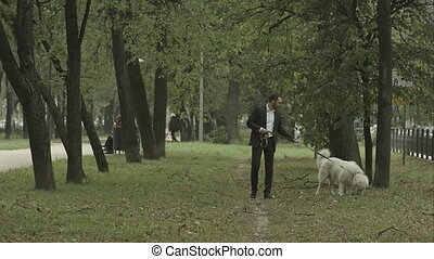 business man quietly walks with big white dog in the park