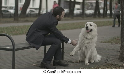 Businessman and his dog shakeing hands playing in the city park siting on bench