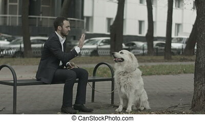 Businessman siting on bench cress his dog in the city park -...