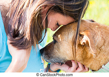 woman and dog console each other - Senior dog consoles a...
