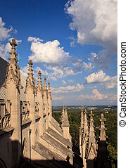 Exterior carvings of Washington Cathedral - View over roof...