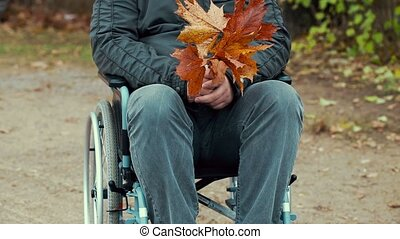 Disabled man with autumn leaves in wheelchair at outdoor in...