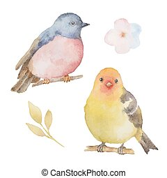 Set of watercolor birds and flowers.