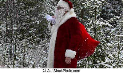 Santa Claus with gift bag in snowy