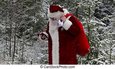 Santa Claus with smarphone in woods
