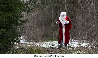 Santa Claus on the road in the wood