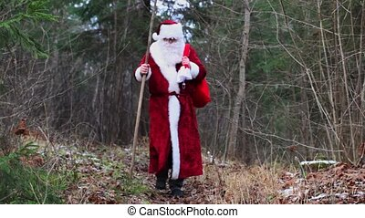 Santa Claus on forest trails