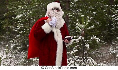 Santa Claus lost in the woods