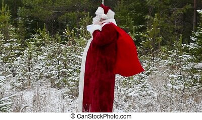 Santa Clause with gift bag in the forest