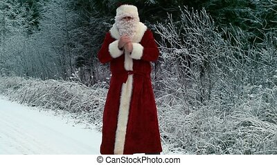 Santa Claus on the road in the forest