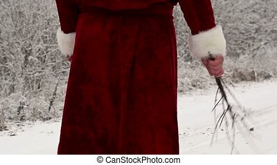 Santa Clause with birch on the road in forest