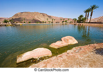 Timna park - The Timna lake at Timna Park in the southern...