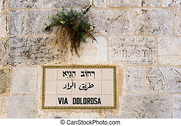 Via Dolorosa - Street sign Via Dolorosa in the old city of...