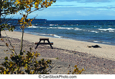 Picnic Lake Superior - Picnic table and driftwood have the...