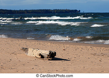 Driftwood on Lake Superior - Large piece of driftwood lays...
