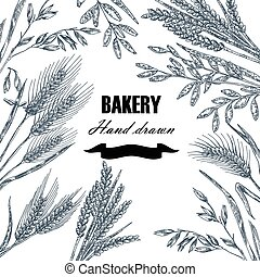 Bread design template. Hand drawn wheat set. Vector illustration