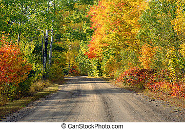Brilliant color in upper penninsula michigan - One lane dirt...