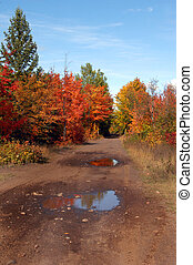 Backroad in Upper Penninsula Michigan - Backroad in Upper...