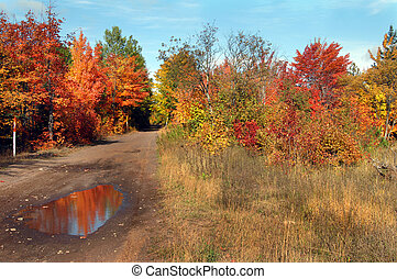 Autumn Reflection - Autumn reflects in mud hole of quiet...