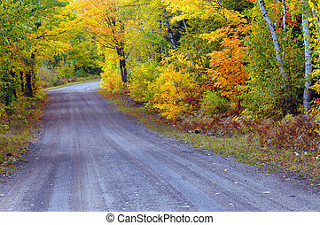 Dirt Lane Lined with Gold - Michigan backroad disappears...
