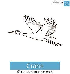 Crane bird learn birds coloring book vector - Crane bird...