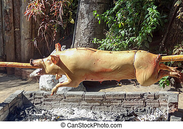 roasting suckling pig - sunny outdoor scenery including a...