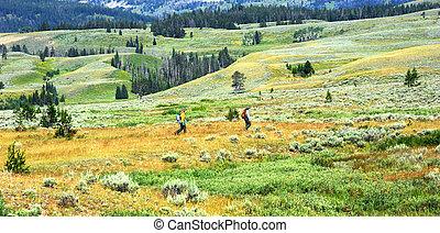 Field Work - Two park rangers work spraying a field inside...