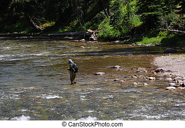 Flyfishing in Montana - Man prepares line for flyfishing on...