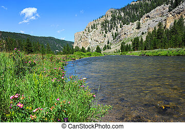 Flyfishing Gallatin River - Gallatin River runs along scenic...