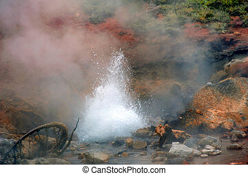 Bubbling and Spewing - Bubbling and spewing small hot spring...