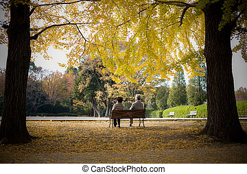 Grandparent in the Ginkgo Park Showa Kinen, Tachikawa -...