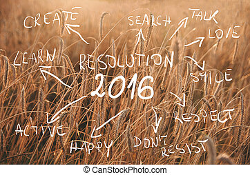 New Year Resolution 2016 Goals written on field of wheat...