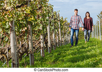 Couple walking through vineyard - Photo of a young couple...