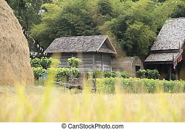 Farm background straw hut Jim Thompson - Rice field blur in...